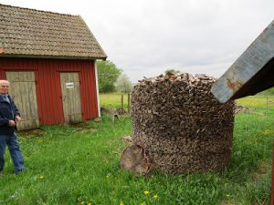 2013-05-22Heljesgården (14)