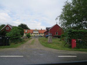 2013-06-01Skoglösa (7)